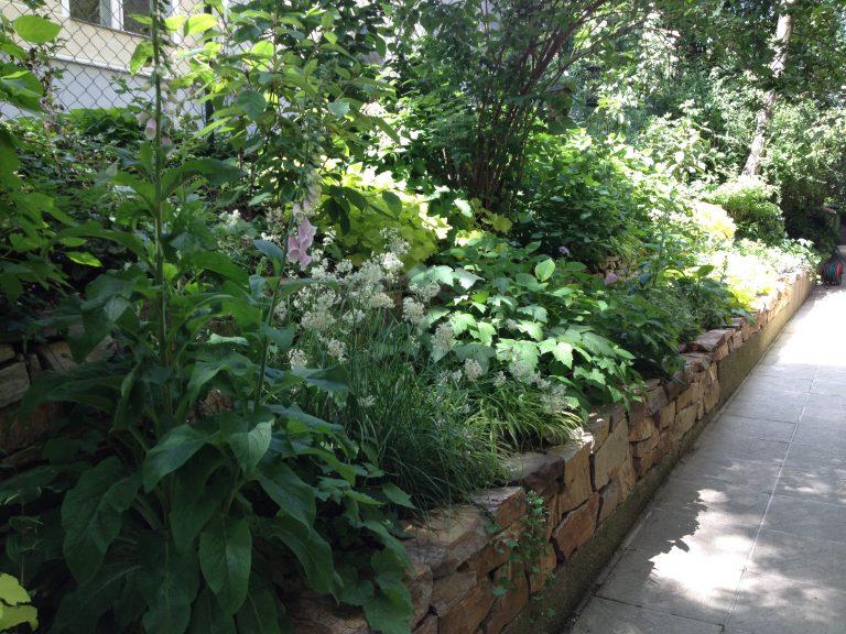 Trockensteinmauer Schattengarten